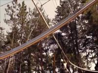 Une aventure en tyrolienne dans la forêt