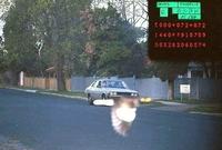 excès de vitesse : sauvé par un piaf
