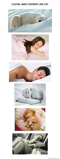 Tout le monde est mignon quand il dort