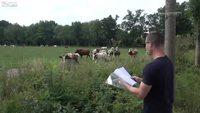 L'homme qui murmurait à l'oreille des vaches