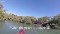 Petite aprèm de pêche tranquille