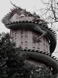 La maison de Shenron