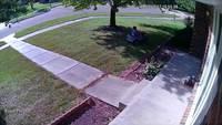 Une caméra de surveillance révèle le voleur d'un colis