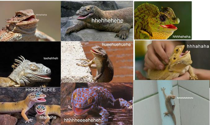 Des reptiles qui rigolent.