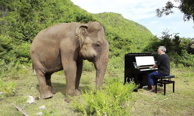 """Je suppose que """"La marche des éléphants"""" de Camille Saint-Saens doit être sa préférée."""