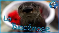 Vulgarisation scientifique - Episode n°2 : Les interactions entre les êtres vivants au sein d'un écosystème !