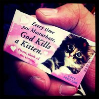 Dieu tue les chats