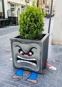 Une jardinière