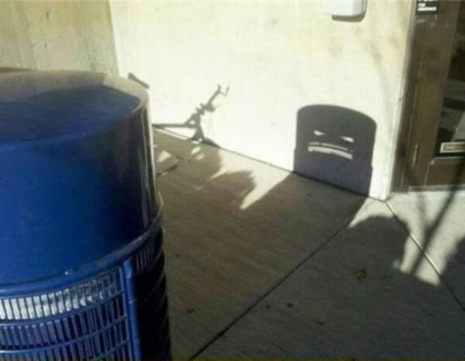 Ils se tapissent dans l'ombre