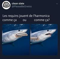 Et les baleines ?