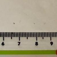 Fucking metric system