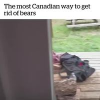 Comment demander poliment aux ours de partir