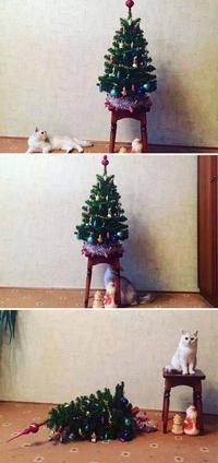 Noël, c'est fini !