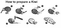tu veux mon kiwi?