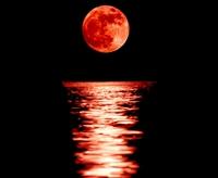 Superbe lune rouge !