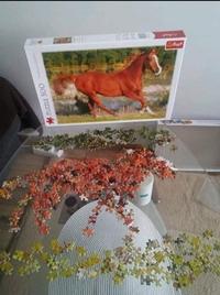 Un pro des puzzles