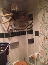 Blague de salle de bain