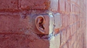 Les murs ont UNE oreille