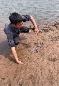 Technique de chasse