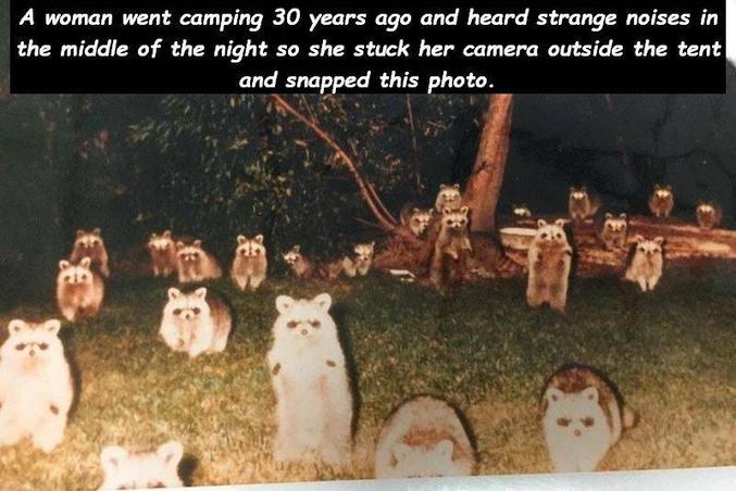 Prendre une photo de l'extérieur avec flash, et découvrir ce qui s'y passe.