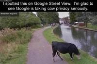 La vie privée des...animauuuuuuux