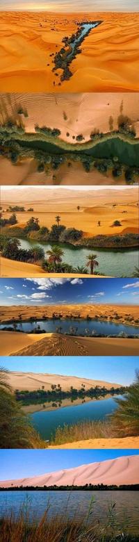 Oasis en Lybie