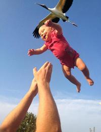 Comment on fait les bébés?