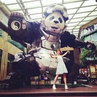 Trouvez le mecha panda