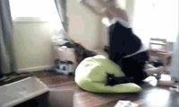 Cat apult