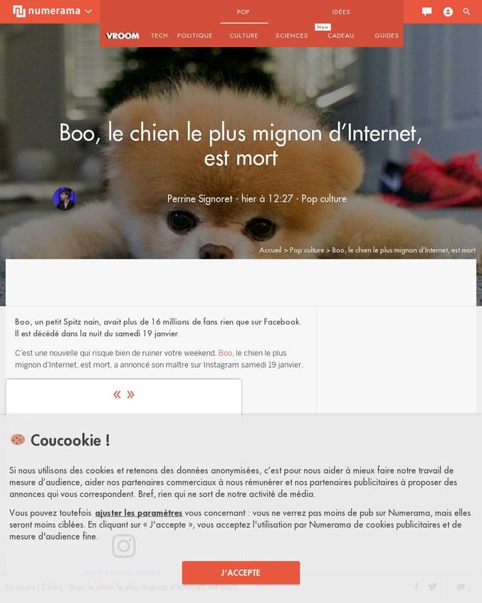 Boo le chien le plus mignon d'internet est mort samedi. #flashball