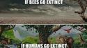 S'il y avait extinction...