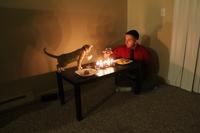 Quand tu passes la soirée avec ton chat