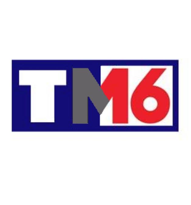 TF1 et M6 se rapprochent pour fusionner... Ça promet de beaux jours aux vendeurs de peurs et de pubs !  Quel sera le nouveau nom ? TM-16  ? Des idées logos parmi les Lombriks?