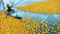 Kan tu fais du kayak dans la baignoire d'Orme
