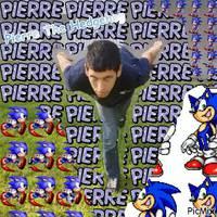 Pierre the Hedgehog
