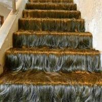 Escalier Chewbacca