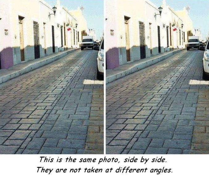 C'est la même photo, côte à côte.Elles n'ont pas été prises sous différents angles.