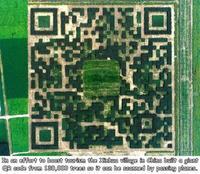 Idée chinoise : un QR code qu'on peut scanner d'un avion, et constitué par des bosquets d'arbres