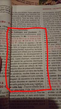 """""""Choux et capotes"""""""
