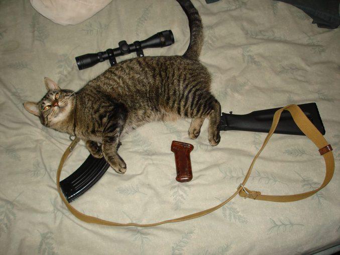 Une arme pour surpasser le Metal Gear.