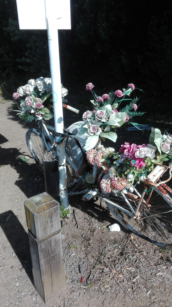 En hommage, une seconde fois à un grand homme, toujours plus grand sur son vélo.
