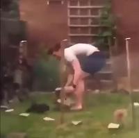 Attrape le lapin !