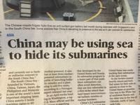 Le chinois il est fourbe, il est taquin.