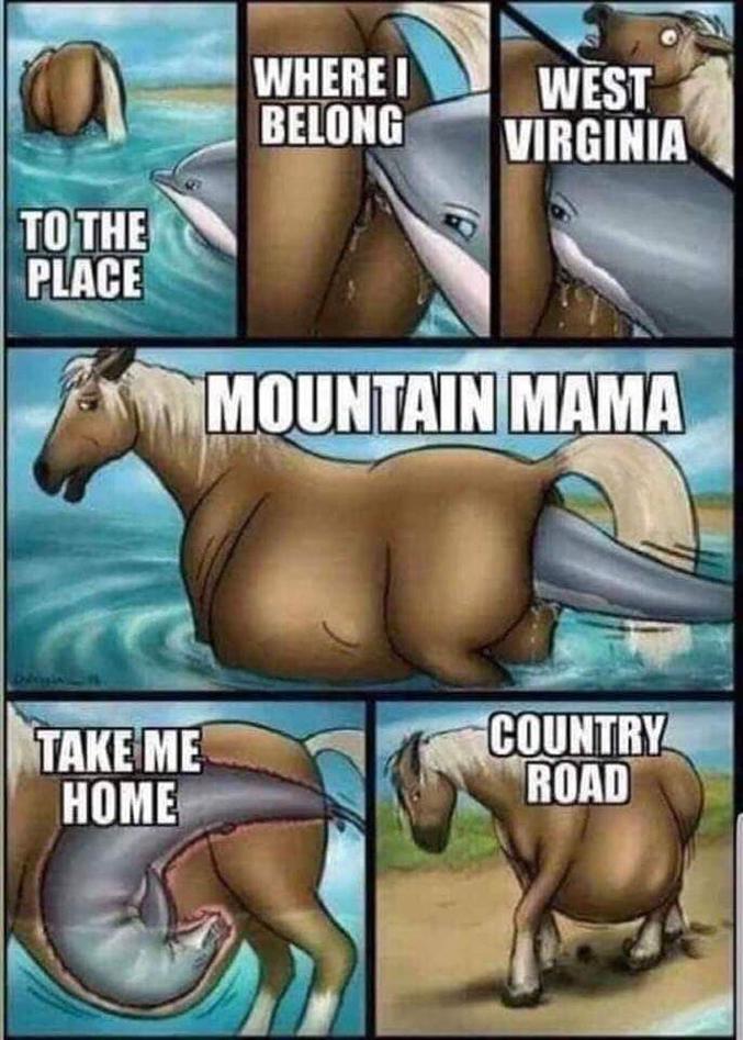 Pour celles qui aiment les dauphins et les chevaux, que c'est mignon ^~^ hihi! OwO