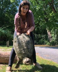 Le fisting turtle, une pratique peu connue