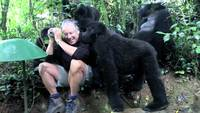Papa gorille emmène ses enfants au zoo