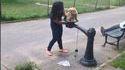 Fontaine à eau publique ou bidet pour chien