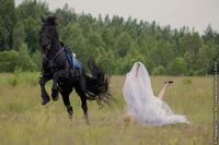 Le cheval divorce déjà