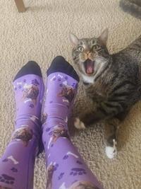 Autoportrait en chaussettes
