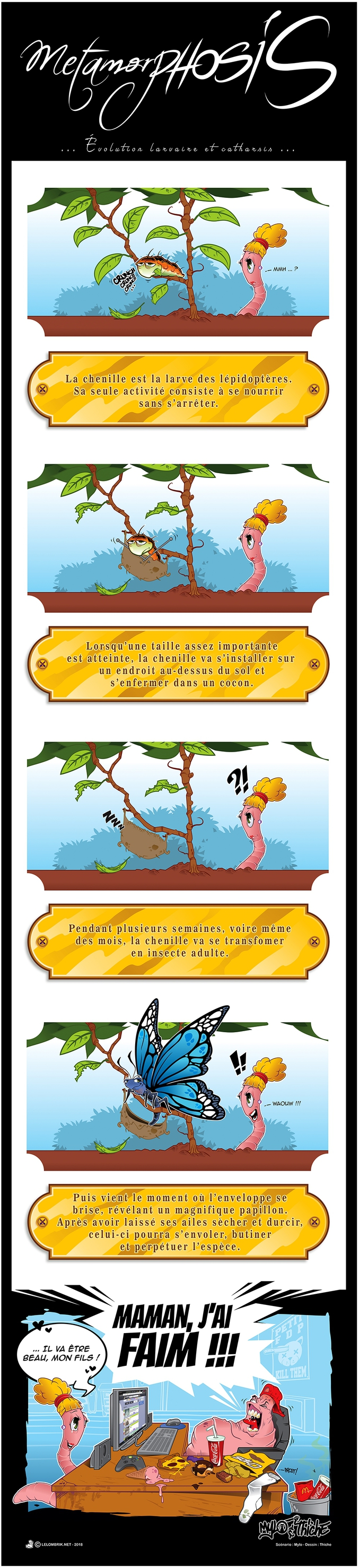 Évolution larvaire et catharsis.